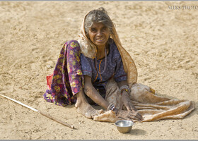 Галта — царство священных коров (Индия)