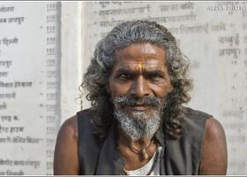 Обитатели обезьяньего дворца (Индия)