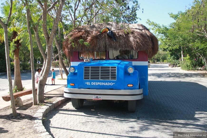 Волосатый автобус. Милое решение от полящего солнца.