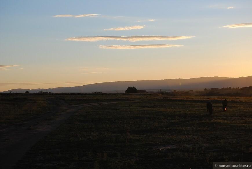 Рассвет в Масаи Мара