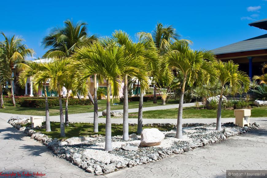 Cuba [29.01.2011][Paradisus Rio De Oro Resort & Spa][08](01).jpg