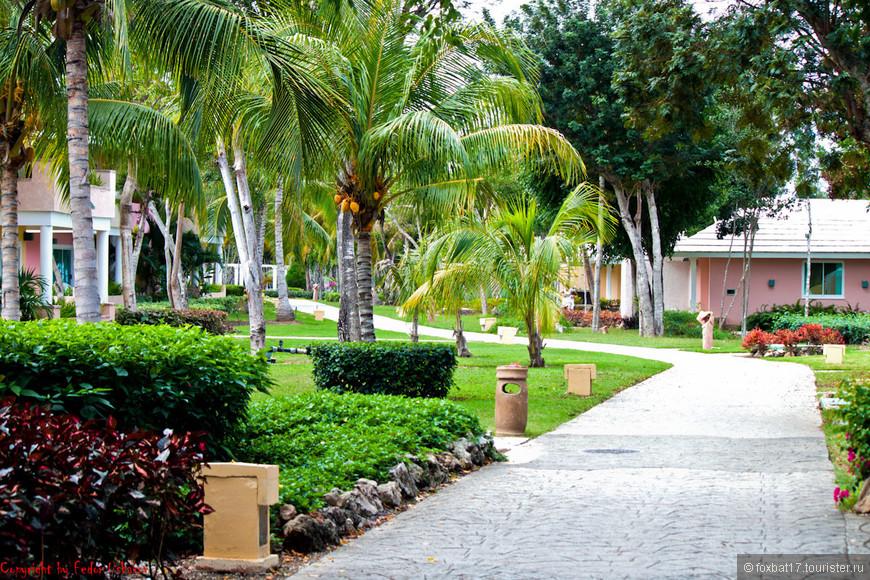 Cuba [29.01.2011][Paradisus Rio De Oro Resort & Spa][10].jpg