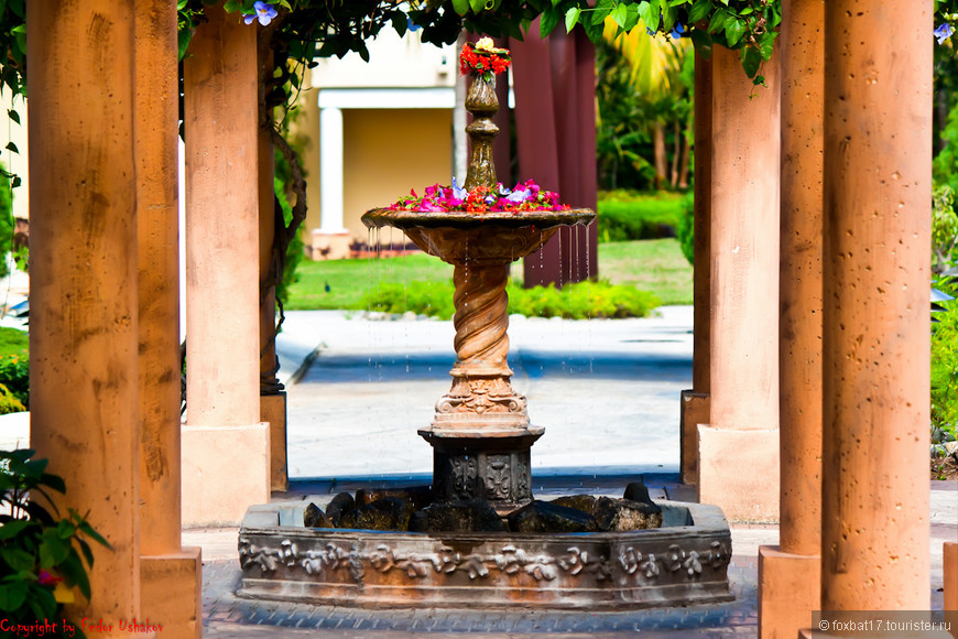 Cuba [29.01.2011][Paradisus Rio De Oro Resort & Spa][20](01).jpg