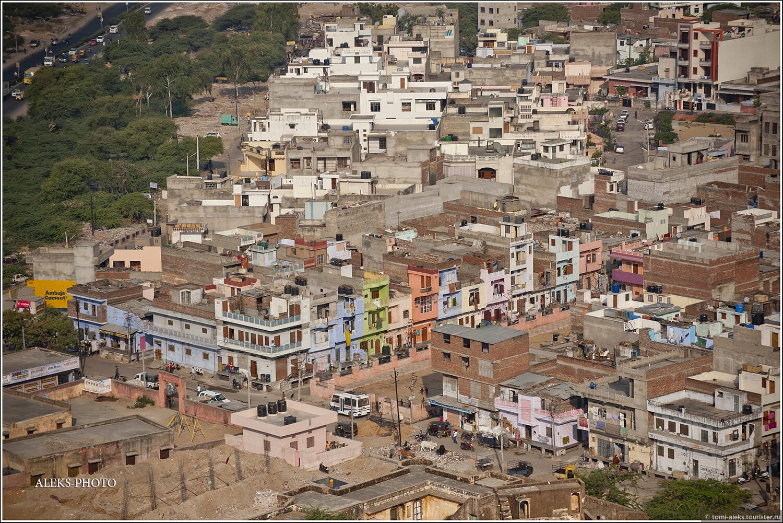 """Фото из альбома """"Мое анималистическое счастье (Индия)"""", Джайпур, Индия"""