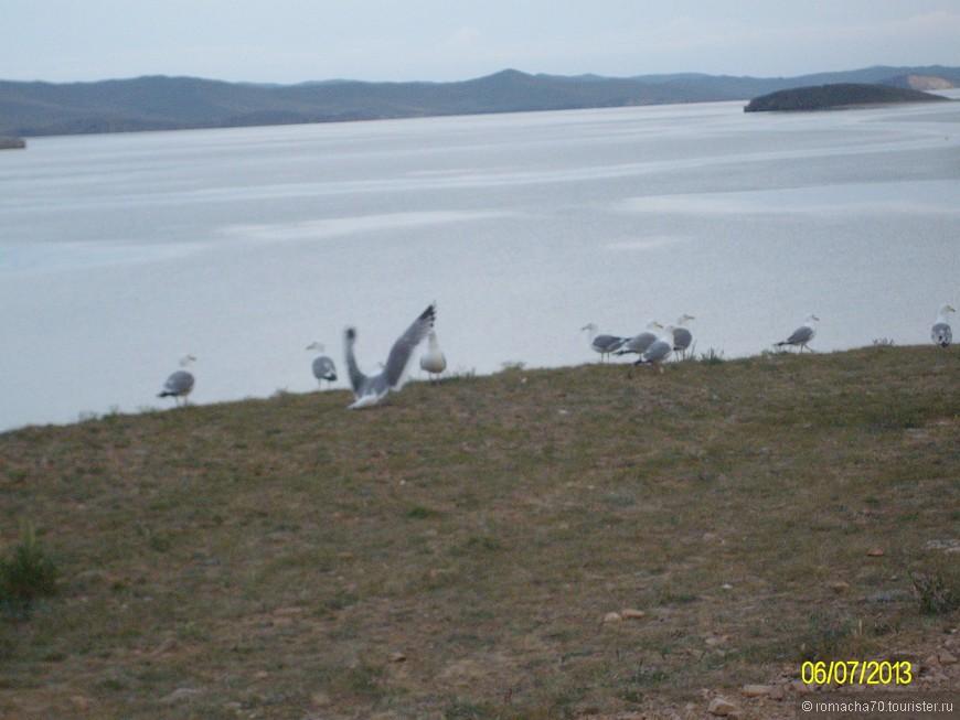 о.Байкал, Малое море залив Хандан-Далай. На против о. Ольхон