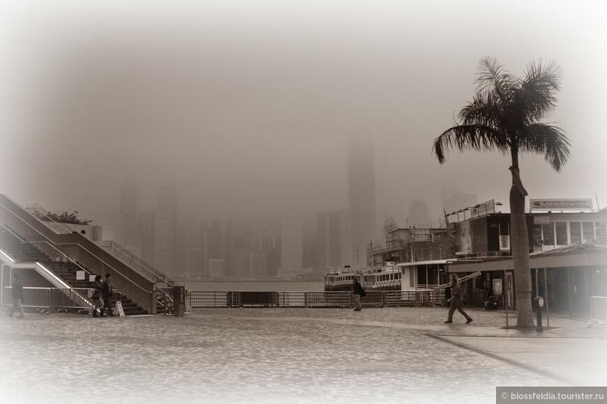 На следующий день погода вообще никак не радовала. Туман скрывал небоскребы на противоположном берегу Виктория Харбор, поэтому восхождение на Пик Виктории опять отменилось. Куда можно поехать в очень пасмурную дождливую погоду? Этот вопрос я задавала почти каждый день, перекраивая свою культурную программу.