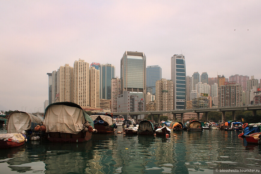 прогулка на лодке вдоль берега острова Гонконг.