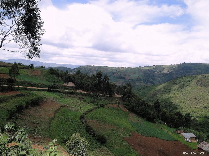 Огороды угандийцев