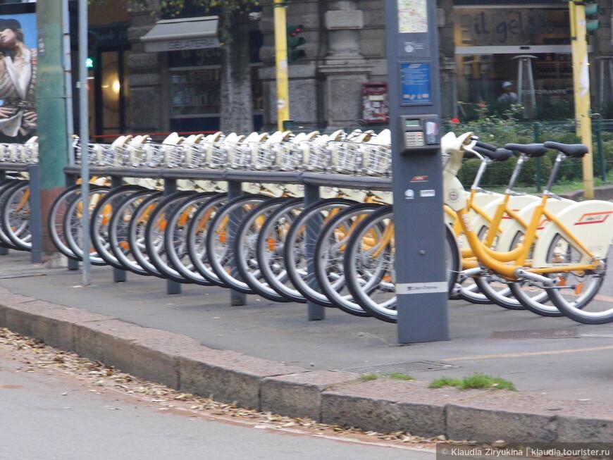 Велосипеды напрокат.