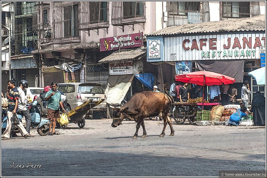 Территории всех азиатских рынков обычно - это сплошные завалы из мешков, лавочек, телег всех видов. Прочувствовали мы это еще в Бангкоке на главном рынке. Но, надо признаться, что индийцы в плане хаоса - просто вне конкуренции...