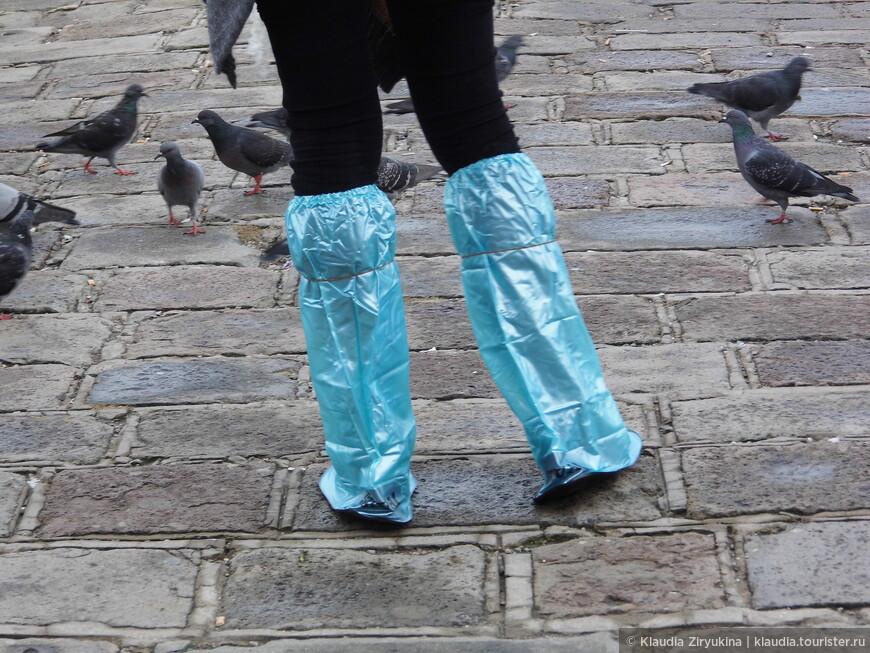 Вот такие сапожки теперь модны в Венеции!