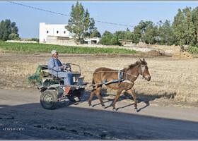 Держим путь в Эль-Джадиду (Марокко)