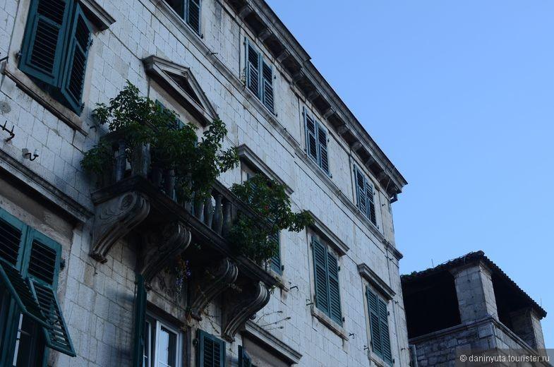 Балкончики, балконы, балконята и иже с ними - моя любовь в Старом Которе. Все выращивают цветы. Балконы (и сами по себе необыкновенно красивые) увиты прекрасными цветами. Восторг!