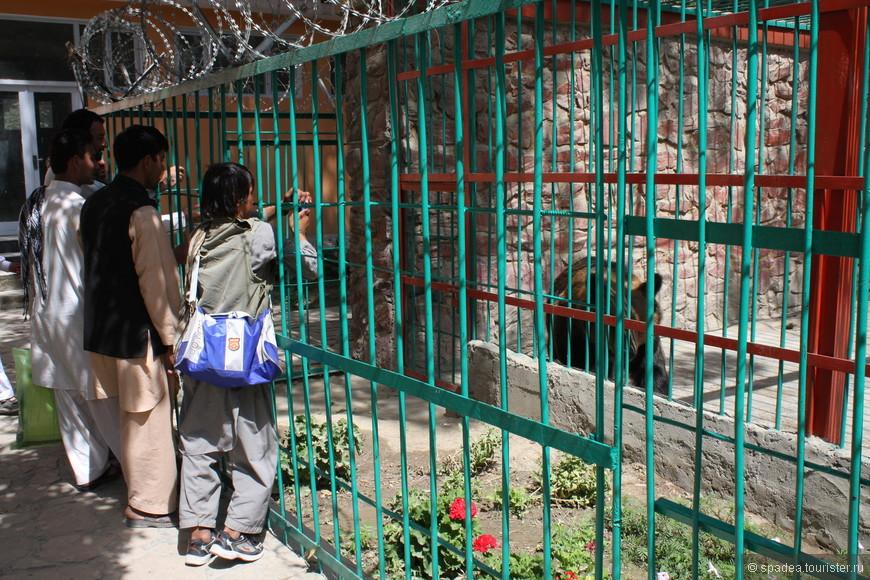в Кабульском зоопарке