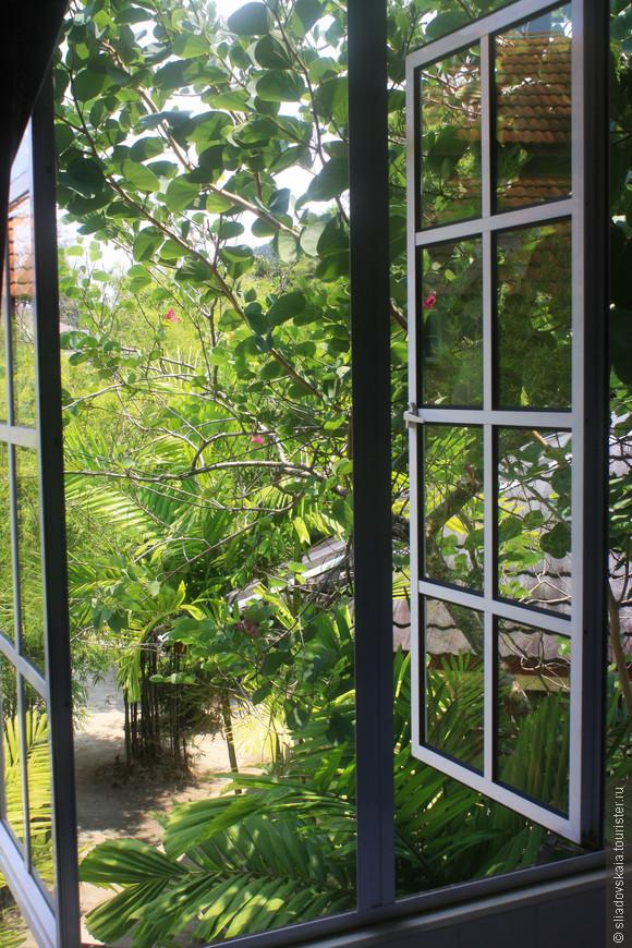 Из окна.jpg