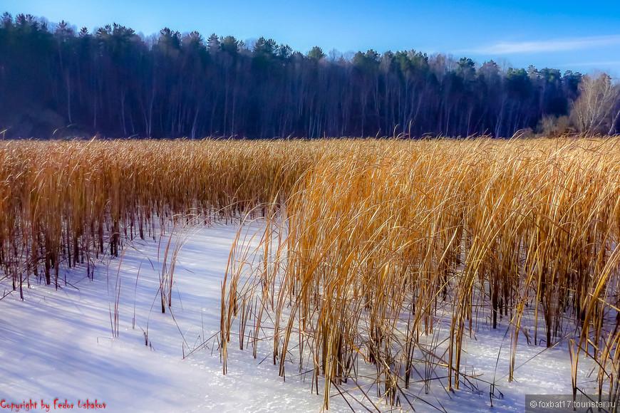Река, а уже замерзла. Но ходить по льду еще опасно.