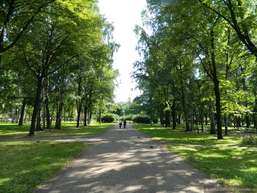 Красивый сад Василеостровец