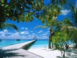 Пошлина ЕС на морепродукты удешевит отдых на Мальдивах