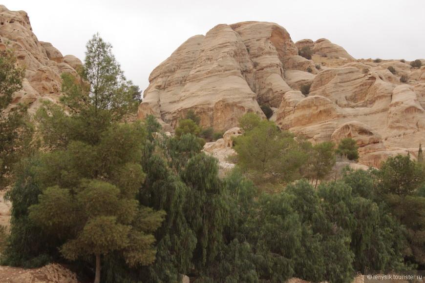 Древние развалины Петры запрятаны глубоко в песчаных горах неподалеку от города Вади-Муса (Долина Моисея). Путь от Вади-Муса до сердца Петры длинный и разнообразный. И начинается он с вымощенной дороги, которая проходит между гор. И вот появилась растительность.