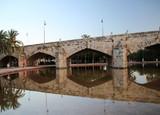 Мосты Турии