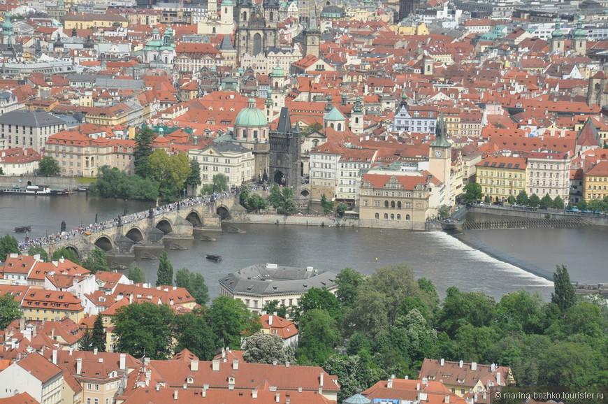 Влтава и Карлов мост. Снято с Петршинской башни.