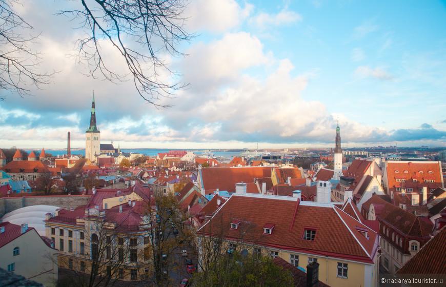 Виды Таллина со смотровой