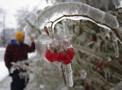 Ледяной дождь парализовал автомобильное и авиасообщение в Канаде