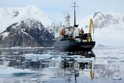 Снежная буря обрушилась на российский лайнер, застрявший в Антарктике