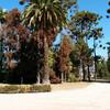Парк винодельни Санта Рита в Чили