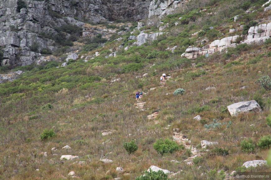 пешая тропа на столовую гору