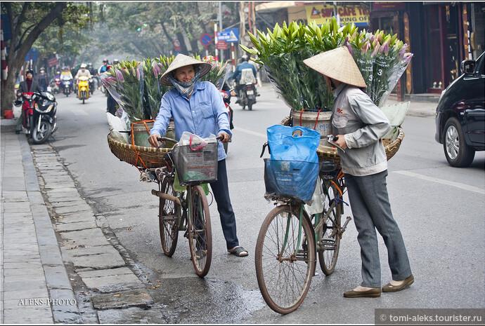 Интересно, что Ханой даже на фоне Пекина не теряет своего лица. Еще бы — в Пекине ведь никто не носит оригинальные конусообразные шляпки. Когда мы прилетели в Ханой 8 декабря - город встретил нас довольно прохладной погодой, но благо хоть дождя не было. А по утрам нашему взору представал город в тумане...