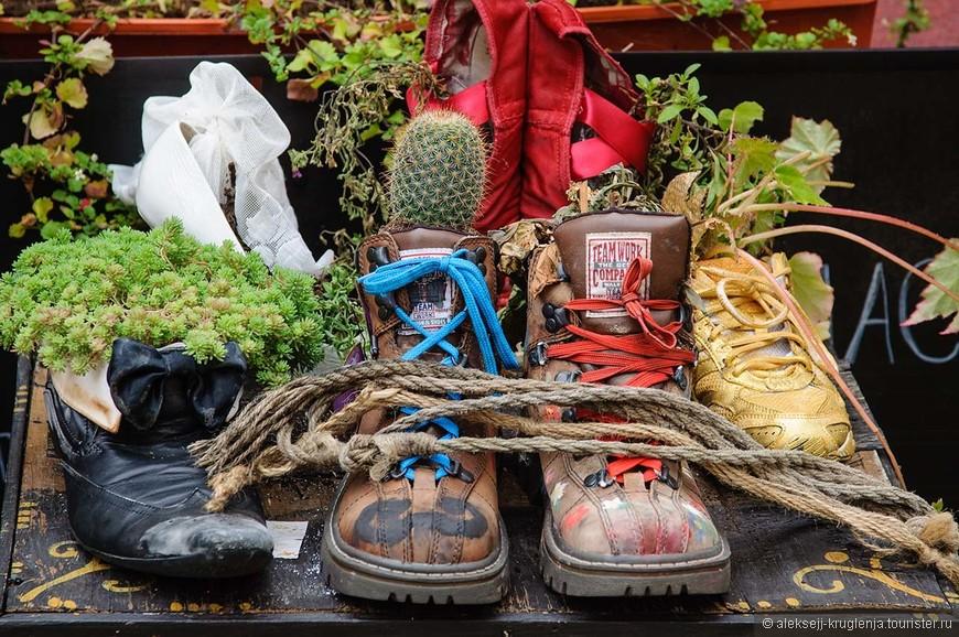 Часть интерьера в одной из кафешек, повсюду кучи кактусов и других растений, посаженных в старую обувь. Выглядит красочно и забавно)