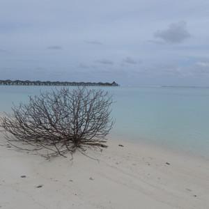 Мальдивы.  Ари Атолл. Sun Island Resort 5*.