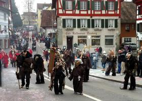 Карнавал в Штайне на Рейне