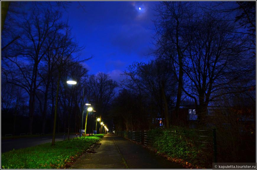 Это аллея к парку, последнее освещенное место...Дальше - тьма....