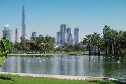 Дубай приглашает любителей спорта