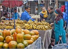ЗАРИСОВКИ ЭЛЬ-ДЖАДИДЫ (Марокко-2013)
