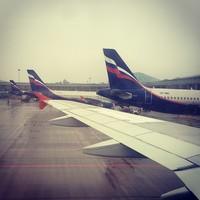 Авиакомпания «Донавиа» задержала два рейса и оставила пассажиров без горячего питания