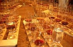 Туристов Лондона познакомят с наукой о вине