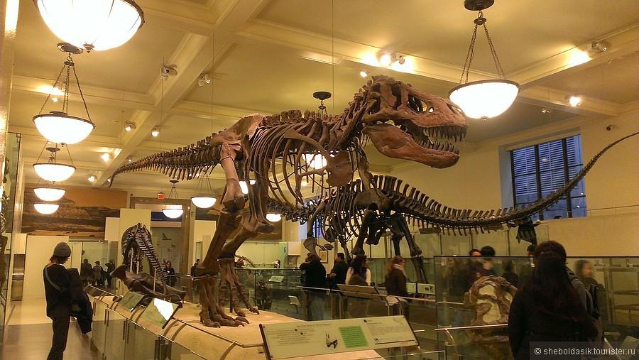 Американский Музей Естественной Истории и планетарий