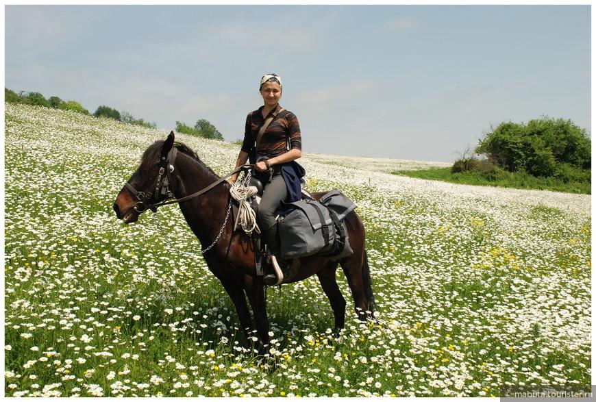 Утопаем с конем в цветочных коврах бескрайних просторов...