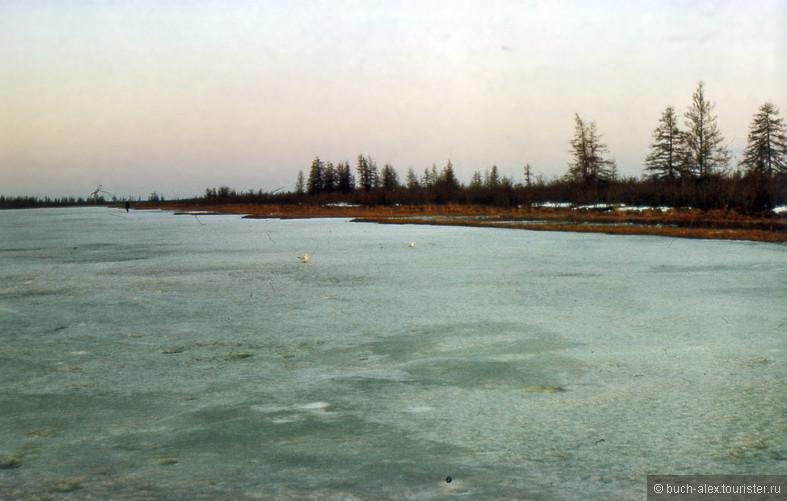 Конец мая, озера и виски скованы льдом. Толстые розовые чайки безбоязнено рассекают в прямой видимости, не боясь быть подстрелянными редкими охотниками.