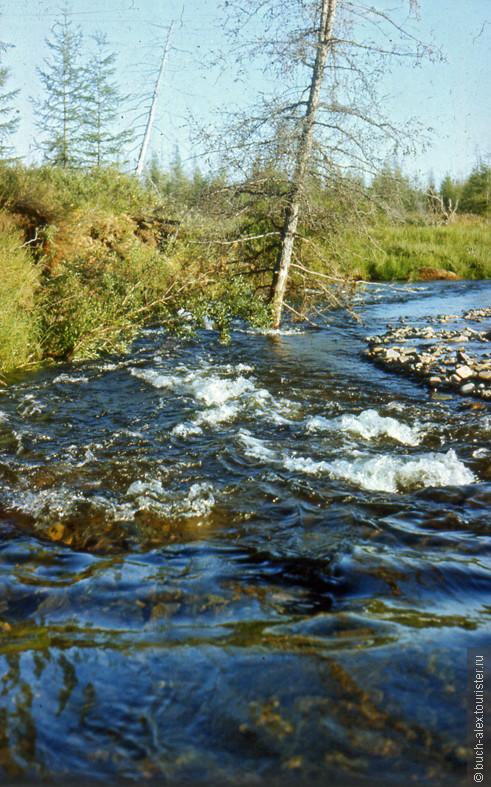 Летом на Колыме очень жарко, можно даже рискнуть искупаться. Эта речка с кристальной водой впадает в мутную Колыму.