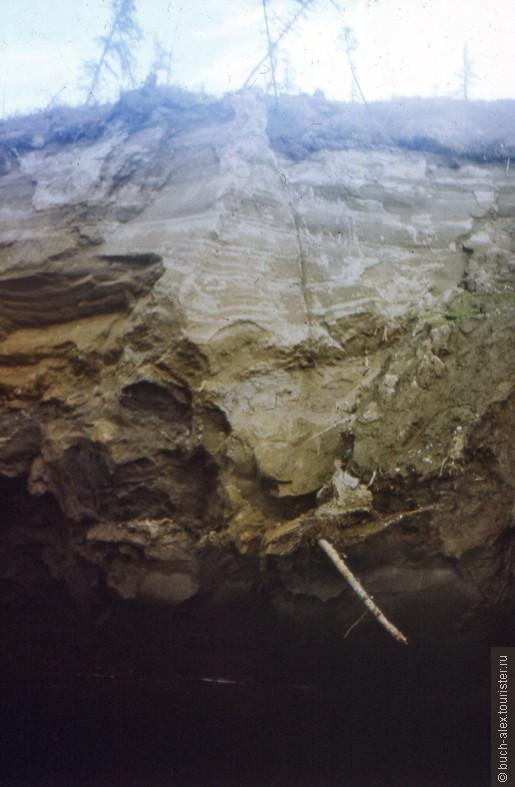 Вероятно на этом кадре был запечатлен торчащий из берега бивень доисторического мамонта. Только чего то я его не вижу. Берег подмывается и осыпается прямо на глазах, тут нужен глаз да глаз.