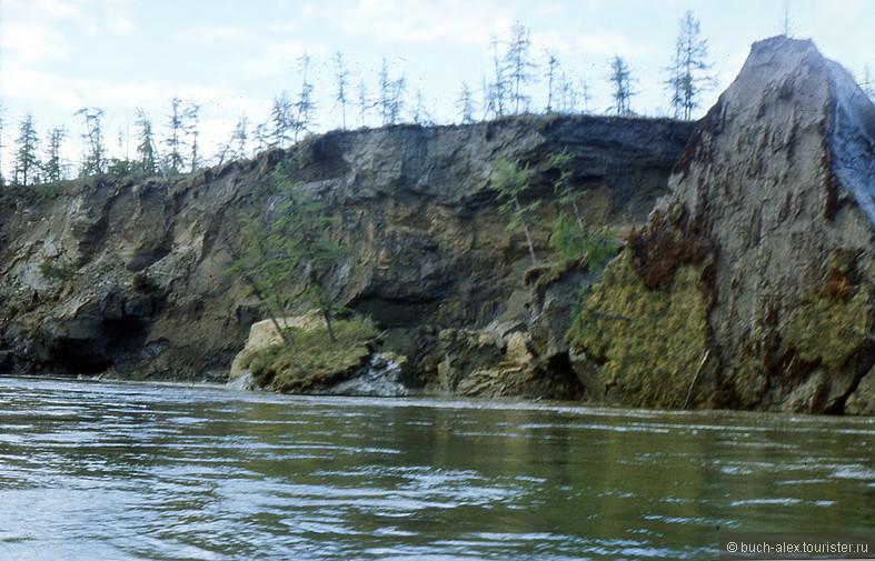 Вот такими кусками, иногда с деревьями, берег подмывается.  Береговая линия меняется. Сейчас вероятно , спустя больше 20 лет, это место и выглядит по другому.