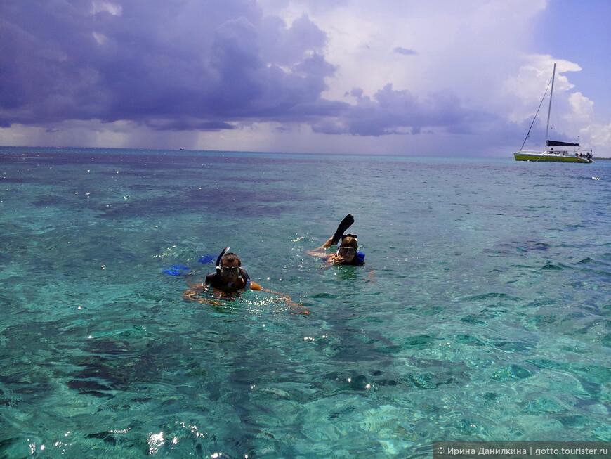 Снорклинг в кристальных водах Карибского моря