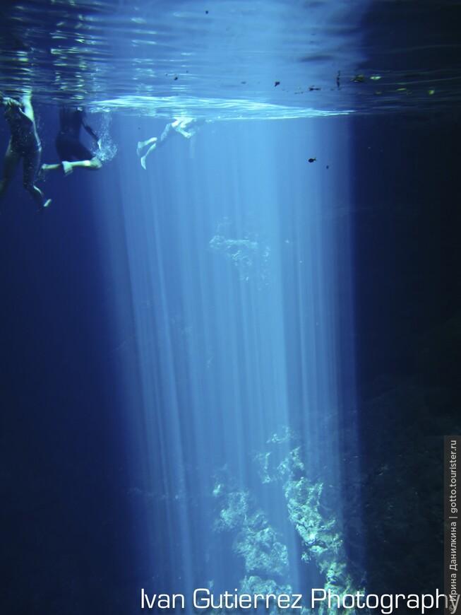 Солнечный свет проникает вглубь карстового колодца - сенота. Голубой цвет воде придает растворенный в ней кальций