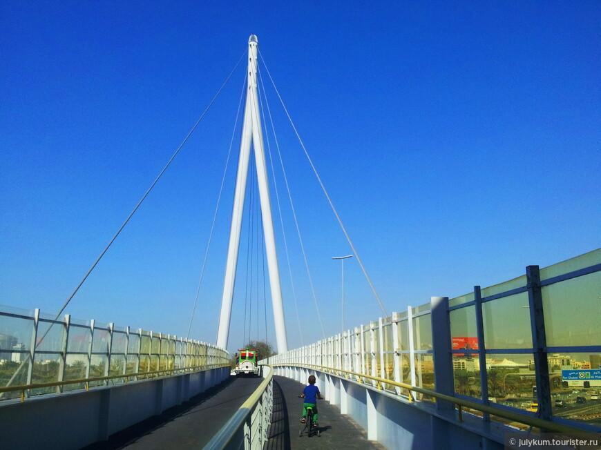Из одной части парка в другую можно попасть по вантовому мосту, раскинувшемуся над скоростной автомагистралью. Либо  пешком, либо, если лень ходить, - на маленьком паровозике.