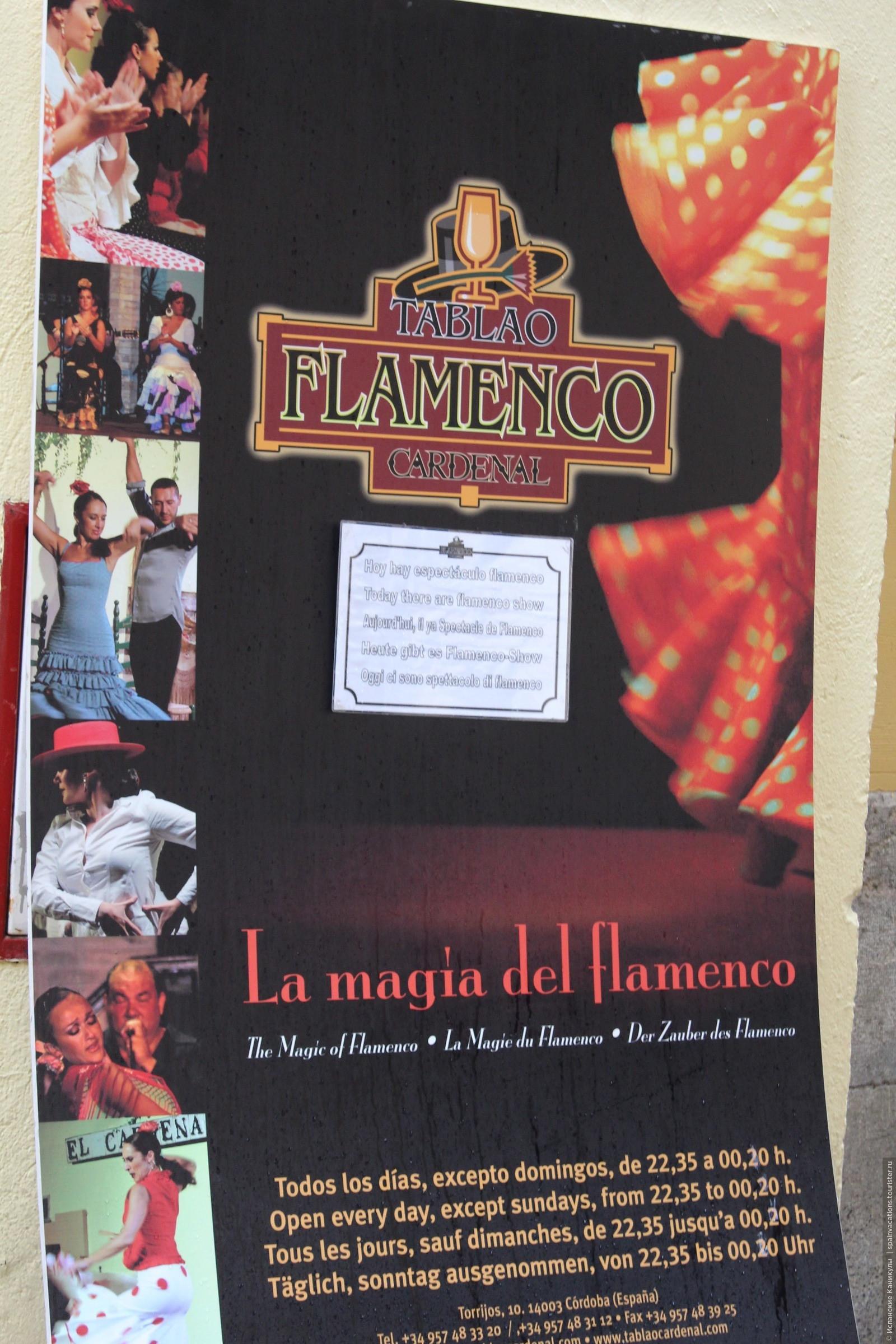 В Кордобе традиционно проводят шоу фламенко. Начинаются они где-то в половину десятого вечера. Имеет смысл сходить! Потрясающее зрелище! , Кордова