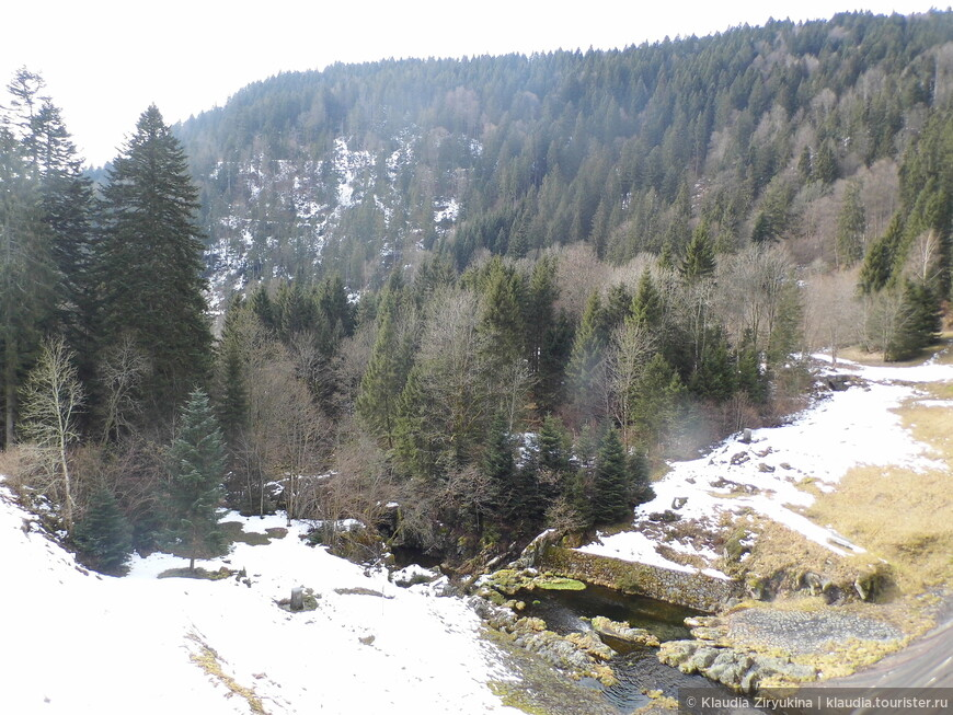 Вид с плотины в сторону горы Фельдберг.